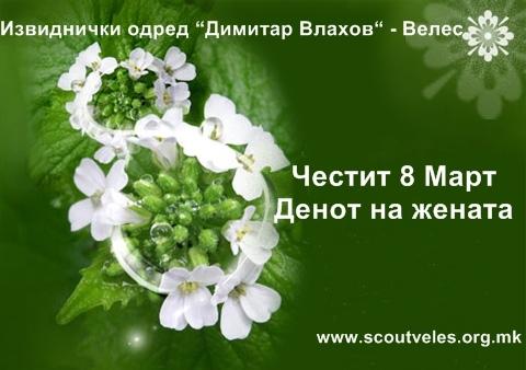 8mart_izvidnici_Veles1