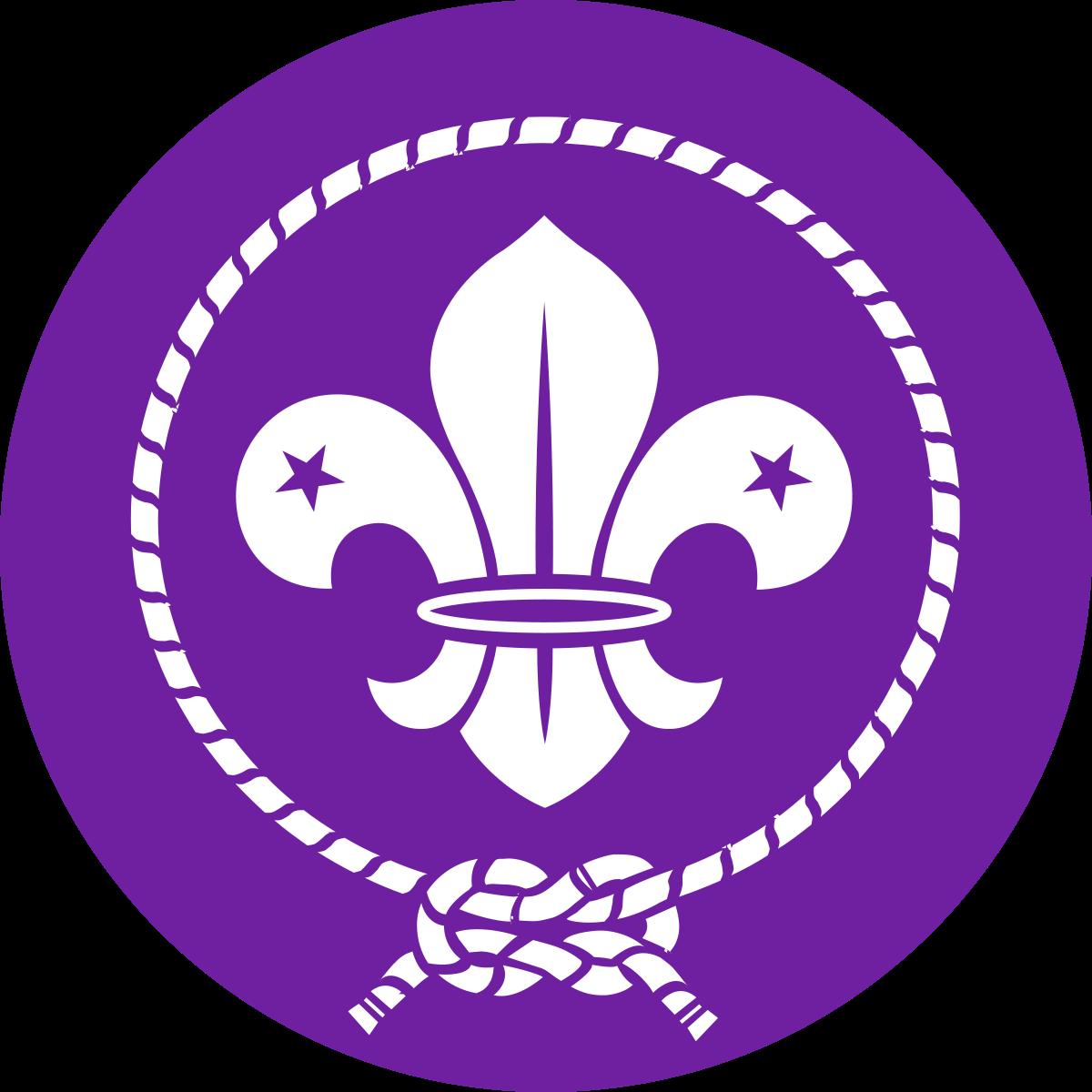 World Organization of the Scout Movement Logo / Светската организација на извидничкото движење лого